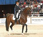 DRESSAGE - Copyrighted Images