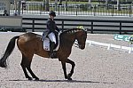 FLORIDA-GLOBAL DRESSAGE