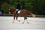 So8ths-5-3-13-Dressage-5315-ErinHite-Codachrome-DDeRosaPhoto