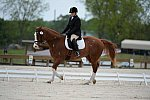 So8ths-5-3-13-Dressage-5317-ErinHite-Codachrome-DDeRosaPhoto