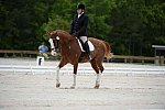 So8ths-5-3-13-Dressage-5321-ErinHite-Codachrome-DDeRosaPhoto