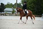 So8ths-5-3-13-Dressage-5322-ErinHite-Codachrome-DDeRosaPhoto