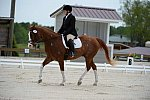 So8ths-5-3-13-Dressage-5324-ErinHite-Codachrome-DDeRosaPhoto