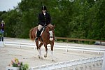 So8ths-5-3-13-Dressage-5326-ErinHite-Codachrome-DDeRosaPhoto