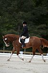 So8ths-5-3-13-Dressage-5334-ErinHite-Codachrome-DDeRosaPhoto