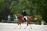 So8ths-5-3-13-Dressage-5335-ErinHite-Codachrome-DDeRosaPhoto