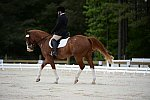 So8ths-5-3-13-Dressage-5343-ErinHite-Codachrome-DDeRosaPhoto