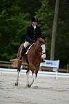 So8ths-5-3-13-Dressage-5355-ErinHite-Codachrome-DDeRosaPhoto